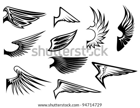 Set of bird wings for heraldry or emblem design, such a logo. Vector version also available in gallery - stock photo