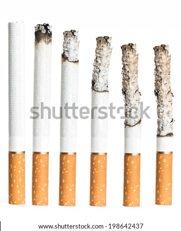 Set of Cigarettes During Different Stages of Burn.  - stock photo