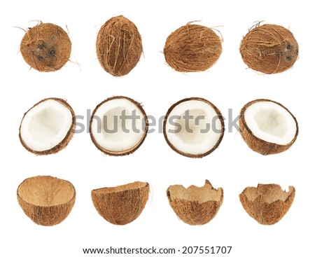 Set of coconut fruits isolated over the white background, whole and cut in halves versions - stock photo