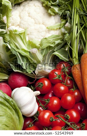 Set of different fresh vegetables - stock photo