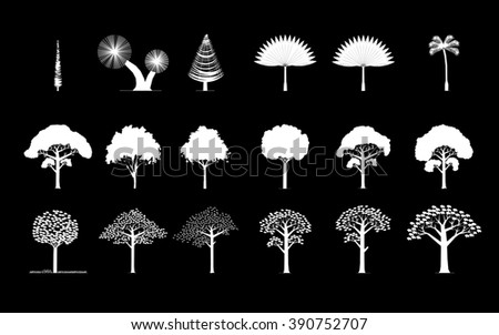 set of different trees, palm, pine... - stock photo