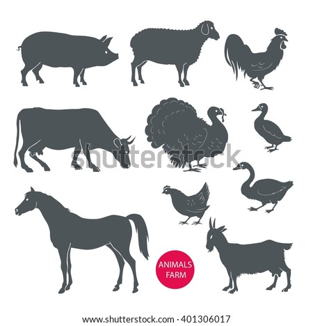 set of farm animals cow, sheep, goat, pig, horse. Set of detailed quality silhouettes of chicken, rooster, goose, turkey, duck. - stock photo
