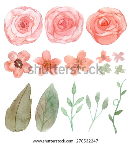 Set of flowers and leaves traditional drawing and painting by watercolor on white background - stock photo