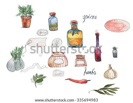 set of green stuff, spices, vegetables and olive oil, balsamic drawing by watercolor at white background, hand drawn illustration - stock photo