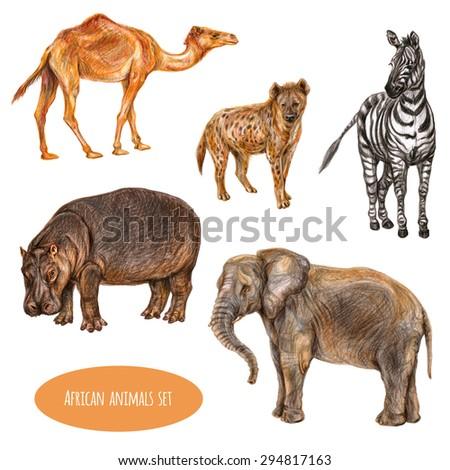 Set of hand drawn african animals. Camel dromedary, spotted hyena, zebra, hippopotamus and african elephant - stock photo