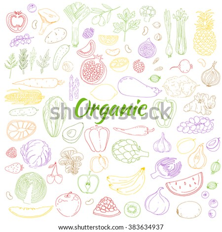 Set of healthy food. Colorful linear food illustration. Sketch. Herb, vegetables, fruit, berries. Hand drawn food  background. Fresh, organic, veggies, natural, farm, bio, raw product. - stock photo