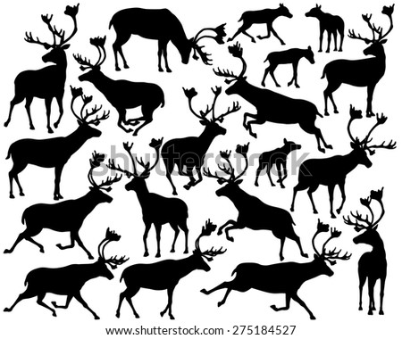 Set of illustrated silhouettes of reindeer or caribou standing, walking, running and leaping - stock photo