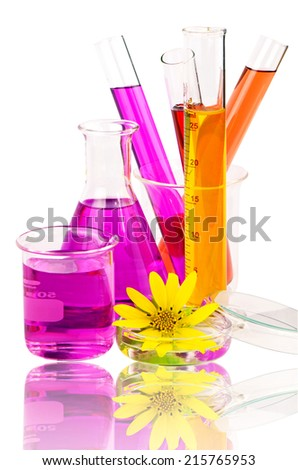 Set of laboratory equipment with chemical solutions and young sunflower isolated on white background with clipping path. - stock photo