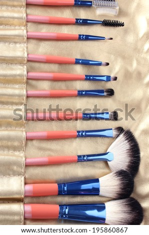 Set of make-up brushes in golden leather case close up - stock photo