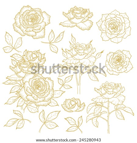 Set of one-colored outlined roses isolated on white background - stock photo