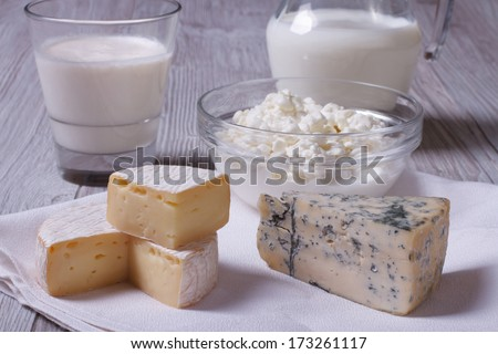 set of products brie, blue cheese, cottage cheese and milk on the table closeup   - stock photo