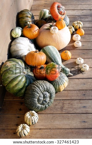 set of pumpkins on wooden background - stock photo