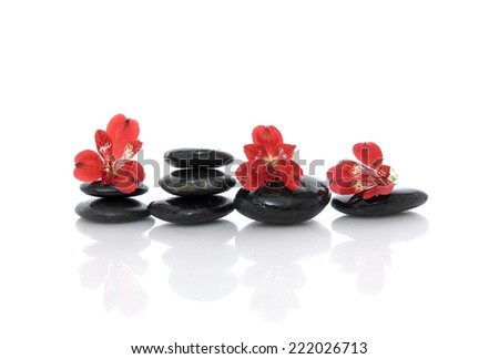 Set of red orchid on stacked black stones  - stock photo