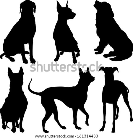 set of silhouettes of dogs pinscher, ridgeback hound, pointer, Newfoundland, Dalmatians breed in various poses - stock photo