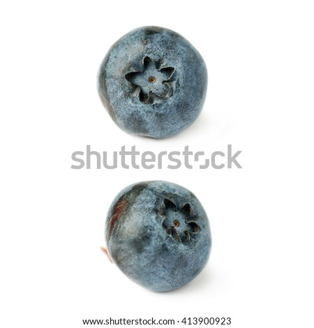 Set of Single berry Ripe bilberry or blueberry over isolated white background - stock photo