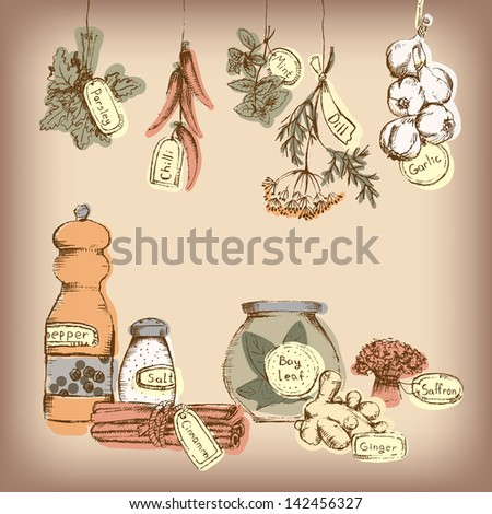 Set of spices and herbs - stock photo