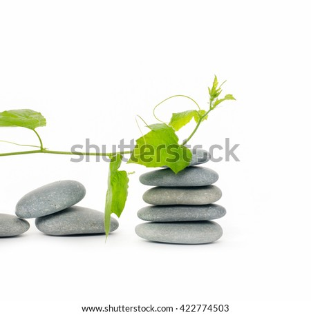 Set of stacked stones and green ivy  - stock photo
