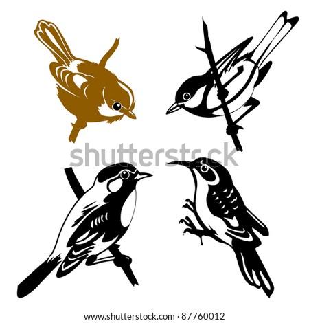 set of the birds on white background - stock photo