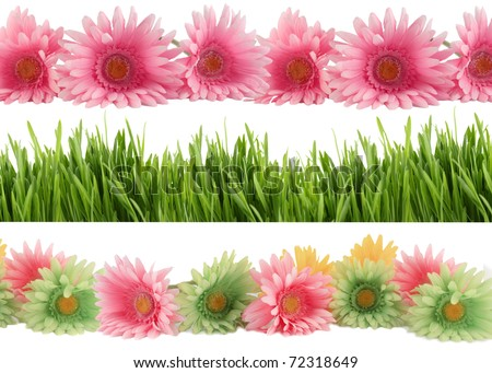 Set of three different borders of green grass, and colorful  gerber daisies - stock photo
