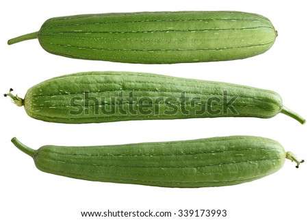 Set of three Sponge Gourd Vegetable Sponge( Luffa cylindrica) isolated on white background - stock photo