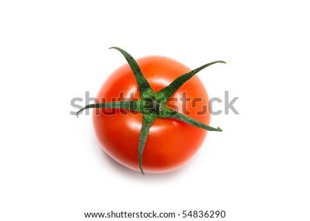 Set of tomatoes isolated on white - stock photo
