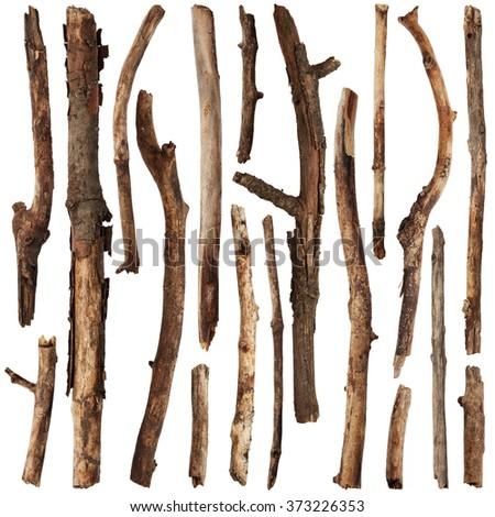 Set of tree sticks isolated on white background - stock photo