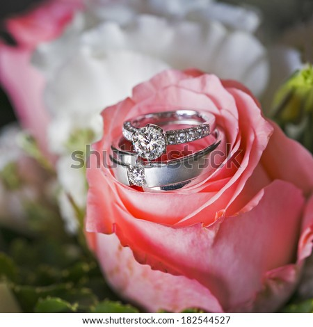 Set of wedding rings in pink rose - stock photo