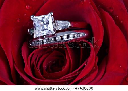 Set of Wedding Rings in Rose - stock photo