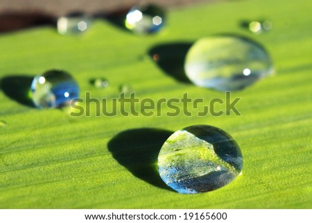 Several drops of the water. Sun light. - stock photo