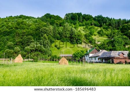 Several haystacks in a beautiful green environment, Maramures, Romania - stock photo