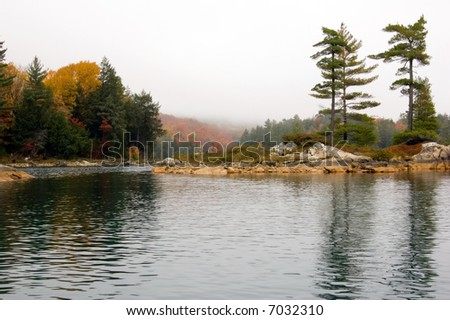 Several spruce trees in the small island - stock photo