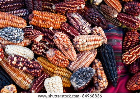 Several traditional varieties of corn in a Peru marketplace in the Urubamba Valley. - stock photo