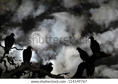 Several vultures are viewed as silhouettes by a rising full moon against a spooky black sky with white clouds - stock photo