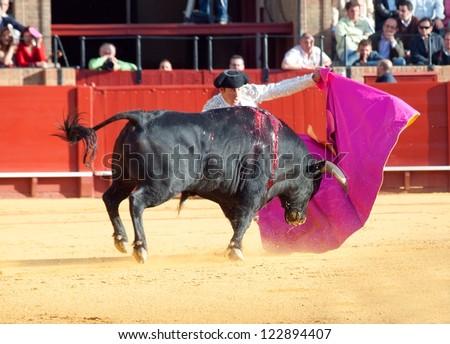 SEVILLA -MAY 20: Novilladas in Plaza de Toros de Sevilla. Unidentified member of corrida. May 20, 2012 in Sevilla (Spain) - stock photo
