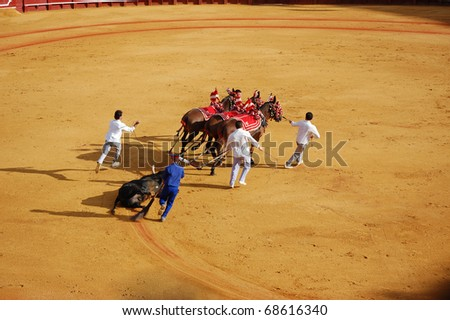 "SEVILLE - APRIL 30: The dead bull is dragged from the ring after Bullfighter David Fandila ""El Fandi"" kills him for a sold out crowd at the Plaza de Toros de Sevilla April 30, 2009 in Seville, Spain. - stock photo"