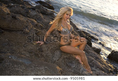 Sexy Woman in flashy outfit posing on the Rocks - stock photo