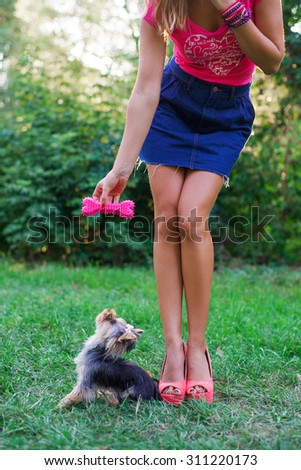 sexy woman trains her small dog on a grass in summer day - stock photo