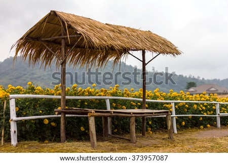 Shacks with roofs thatched with bamboo fence stretcher seat near Marigold mountains as a backdrop. - stock photo
