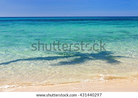 Shadow of coconut palms at sea. Tropical vacation. Tropical sea with shadow of a palm tree on the surface. Sea waves on the tropical beach with shadow a palm tree. - stock photo