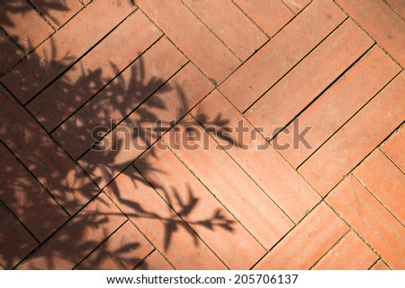 Shadow on the wall - stock photo