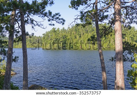 Shadows and Light in the North Woods in That Man Lake in Quetico Provincial Park in Canada - stock photo