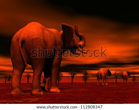 Shadows of three elephants standing between baobabs in the savannah by red sunset - stock photo