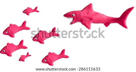shark and fish - stock photo