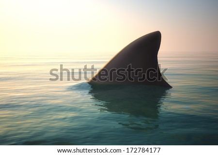 Shark fin above ocean water - stock photo