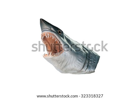 shark head model isolated on white background  with clipping path - stock photo