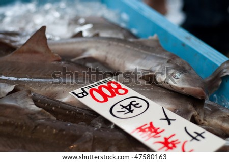 Sharks on sale at a market in Japan. - stock photo