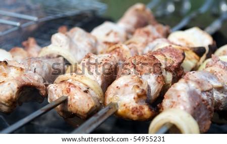 Shashlik (shish kebab) on skewers - stock photo