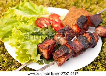 Shashlik with green salad, bread and cherry tomatoes. Top view. Shashlik on a plate on a green grass. Two skewers of shish kebab. - stock photo
