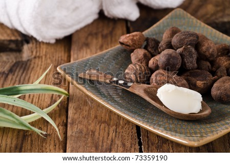 Shea butter in a spoon with sha nuts - stock photo