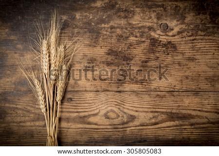 Sheaf of wheat ears on dark wooden background - stock photo